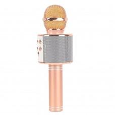 Караоке-Микрофон Орбита WS-858 беспроводной с USB